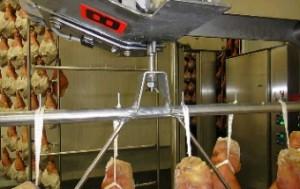 Guidovie ad uso alimentare Particolare blocco sicurezza carrucola