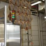 candidori-omc-robot-sugna-DSC_2692